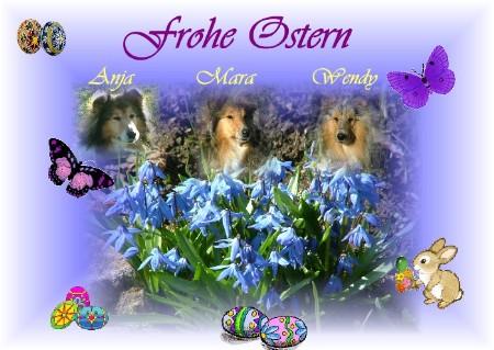An den Beitrag angehängtes Bild: http://collies-anjaundmara.de/Pictures/Karten/ostern/osternam0806.JPG